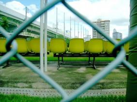 リオデジャネイロオリンピック,新種目,7人制ラグビー