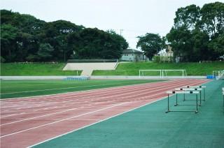 リオデジャネイロオリンピック ,出場選手