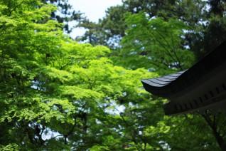 神奈川パワースポット