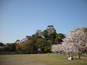 姫路城,白鷺城