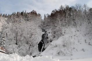 1月12日スキーの日