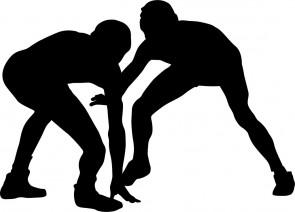 リオ・オリンピック,レスリング女子,登坂絵莉,伊調馨,金メダル